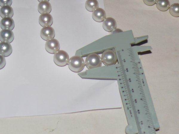 kalung mutiara putih